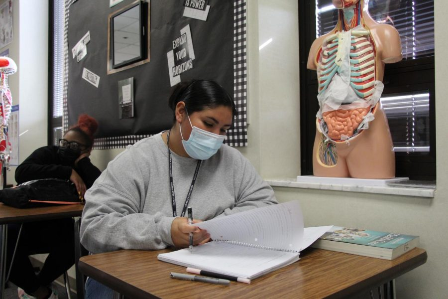 Senior+Isabella+Montemayor+studies+in+her+CNA+class%2C+which+is+being+housed+at+MHS+this+year.+
